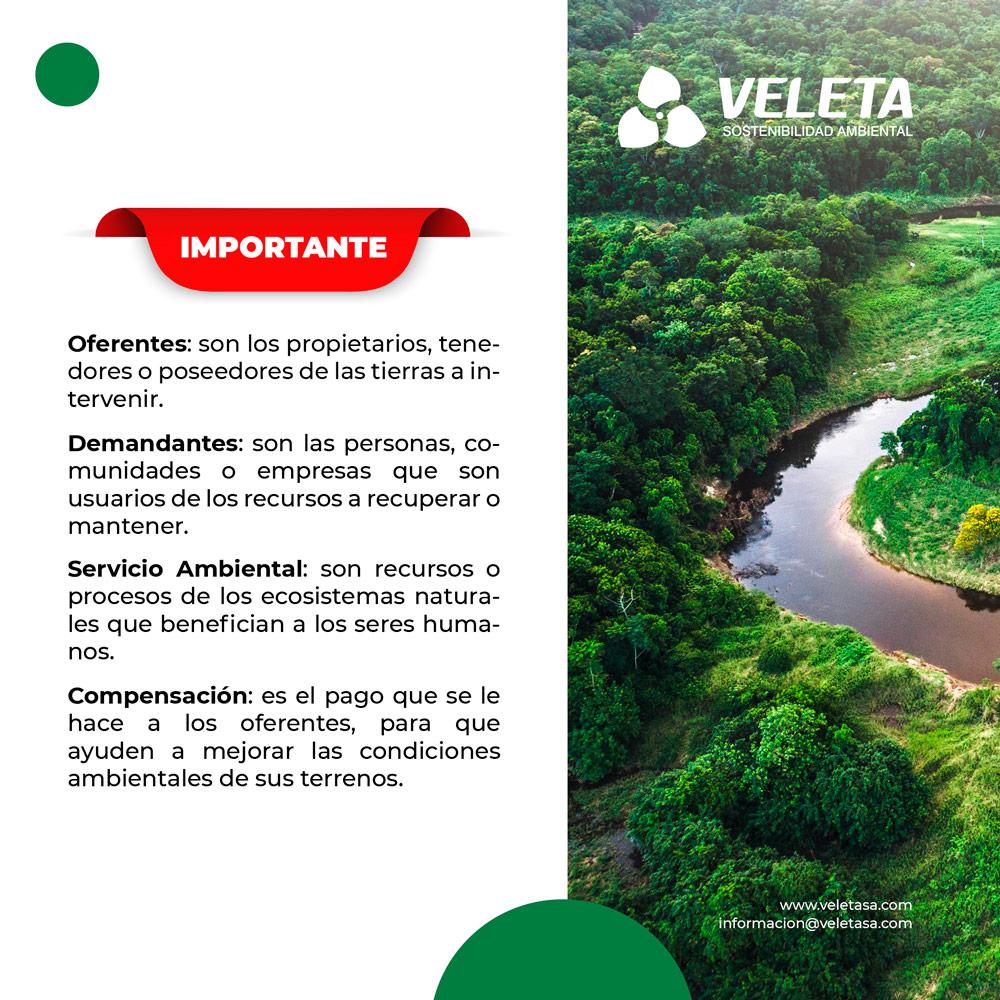 Servicios medioambientales remunerados